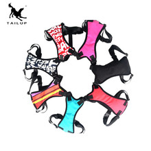 TAILUP Breathable Small Dog Harness Vest With Seat Belt Adjustable No Pull for Puppy Harnesses and Leash Set