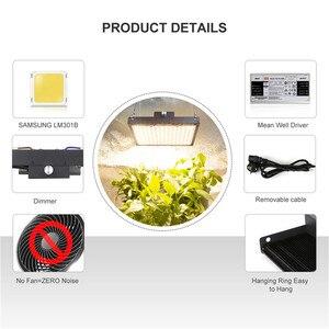 Image 5 - Lượng Tử Đèn LED Phát Triển Đèn Ban Suốt Samsung Lm301b 140W 300W Vật Có Hoa Lớn Đèn Trong Nhà Thực Vật Với meanwell Lái Xe