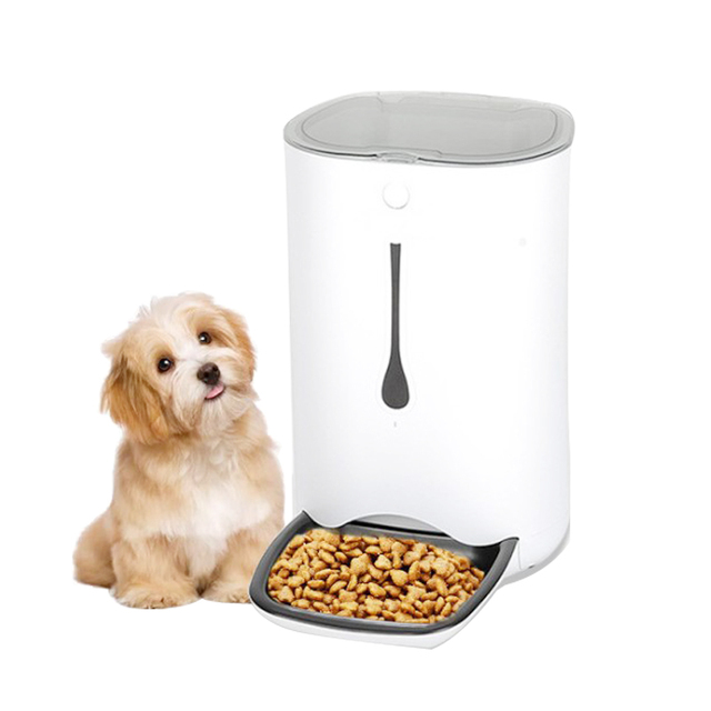 Smart Automatic Pet Feeder for Dogs and Cats  My Pet World Store