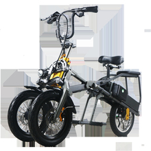 Professional 3 wheel folding portable electric scooter 14 inch/electric tricycle
