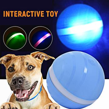 LED Waterproof Dog Ball