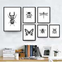 Иллюстрация насекомых черно белая Картина на холсте ручная роспись