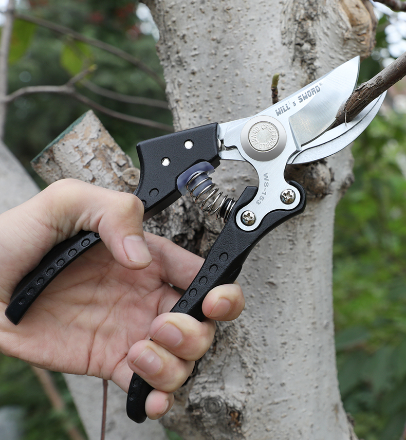 AIRAJ Gardening Scissor for Pruning and Shearing of Branches of Fruit Trees and Plants 19