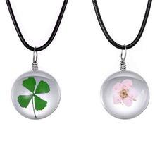Четырехлистный Зеленый Клевер счастливое ожерелье сушеные цветы