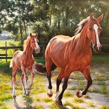 Алмазная живопись с лошадью 5d мозаика «сделай сам» полностью