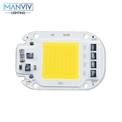 LED COB Chip 20W 30W 50W 110V 220V Smart IC No Need Driver LED Light DIY LED Bulb Lamp For Flood Light Spotlight Home Lighting