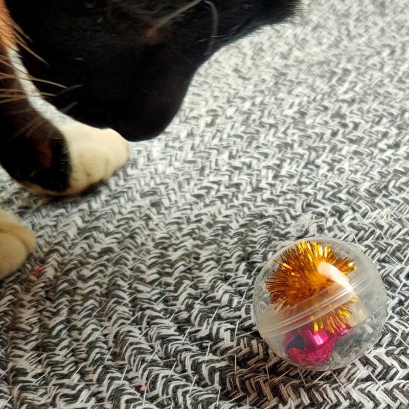 LED กระพริบ Cat Ball,ดูวิดีโอของเรา TO Know More,แมวที่มีสีสันของเล่น