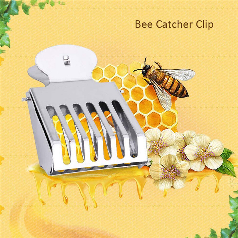 Beehive Beekeeper Equip Queen Bee Cage Beekeeping Clip Insect Catcher No-hurt