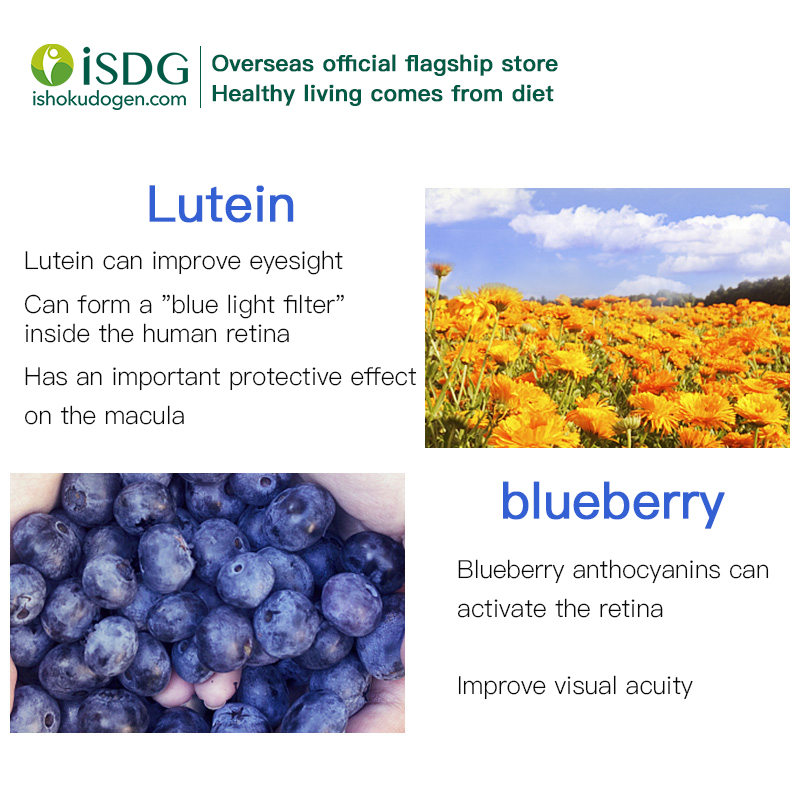 ISDG Blueberry Bilberry Extract Xanthophyll  Carotene Supplement Vision Support to Relieve Eye Pressure. 60 Tablets 3