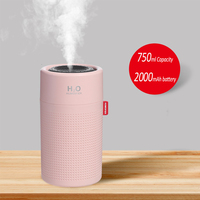 750ML Pink
