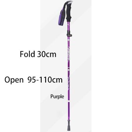 Purple 30cm
