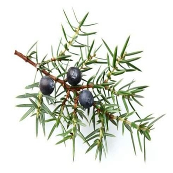 цена care material natural health juniper Essential Oil 10ml single essential oil aromatherapy foot whitening and онлайн в 2017 году