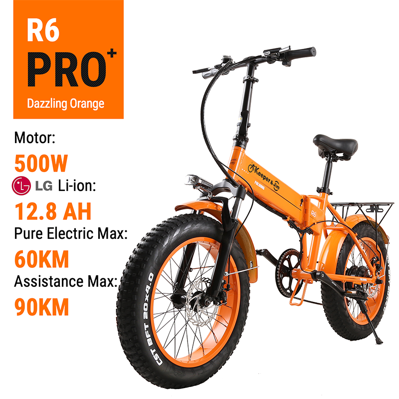 Electric Bike 48V12.8A Lithium Battery 20*4.0inch Aluminum Folding Electric Bicycle 500W Powerful Mountain bike Snow /beach bike