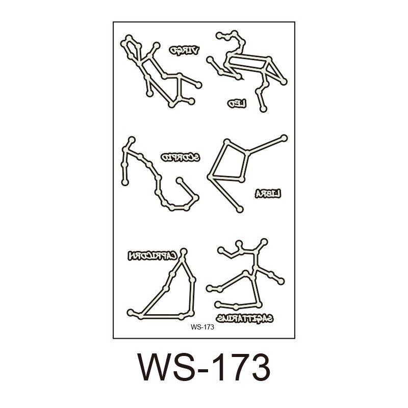 WS-173
