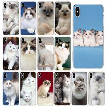 Pet cat ragdoll Transparent TPU Soft Phone Case Cover for iPhone 11 pro XS MAX 8 7 6 6S Plus X 5 5S se 2020 XR cover black cover lovely cat for iphone x xr xs max for iphone 8 7 6 6s plus 5s 5 se super bright glossy phone case