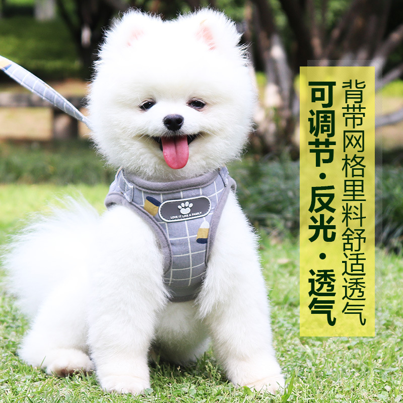 Small Type Dog Puppy Lanyard Vest Dog Teddy Bichon Pomeranian Puppy Traction Chest Universal Dog Unscalable Walking