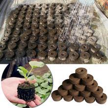 5 sztuk Jiffy torf pelety nasion początek korki nasiona Starter paleta sadzonka gleby blok Pro narzędzia ogrodnicze łatwy w użyciu 30mm tanie tanio KITPIPI Nursery block Włókno roślinne Garnki przedszkola