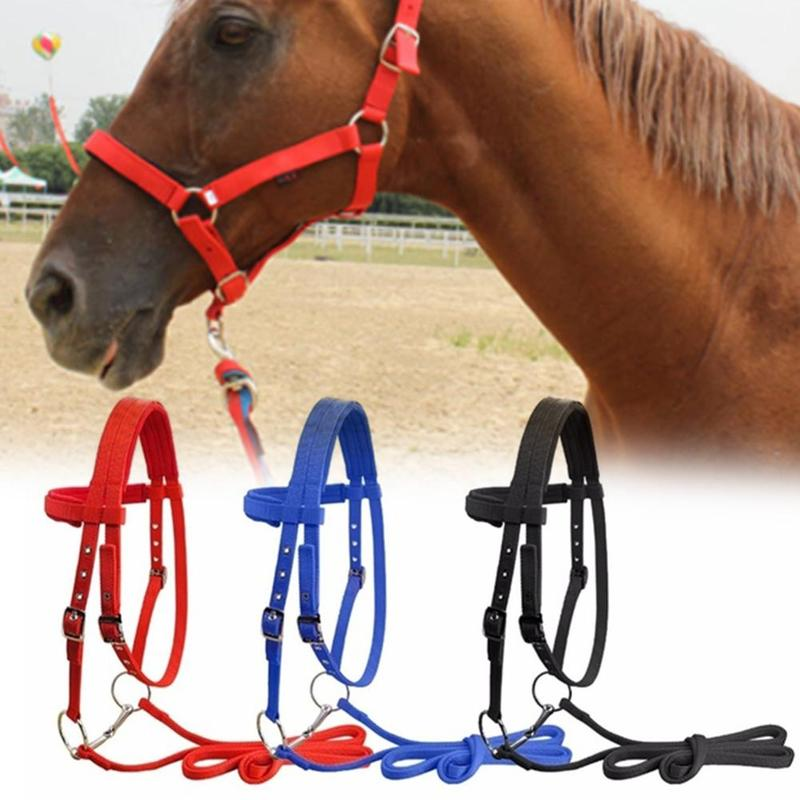 S/m/l Adjustable Horse Riding Equipment Halter Horse Bridle Horse Training Rope Horse Head Collar Equestrian Accessories