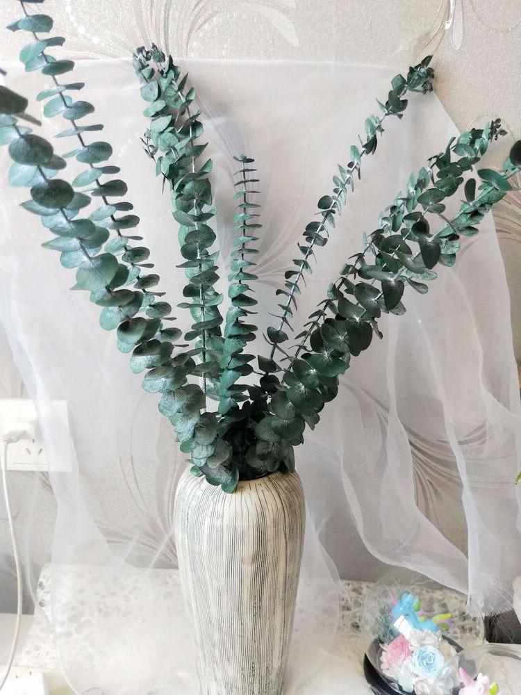 Сушеные Ветви Эвкалипта 45-50 см, букет свежих цветов из натуральных зеленых растений, украшение для сада и дома