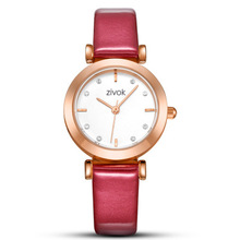 Women's Watches Top Brand Fashion Womens Ladies Simple Watches Leather Analog Quartz Wrist Watch clock saat Gift