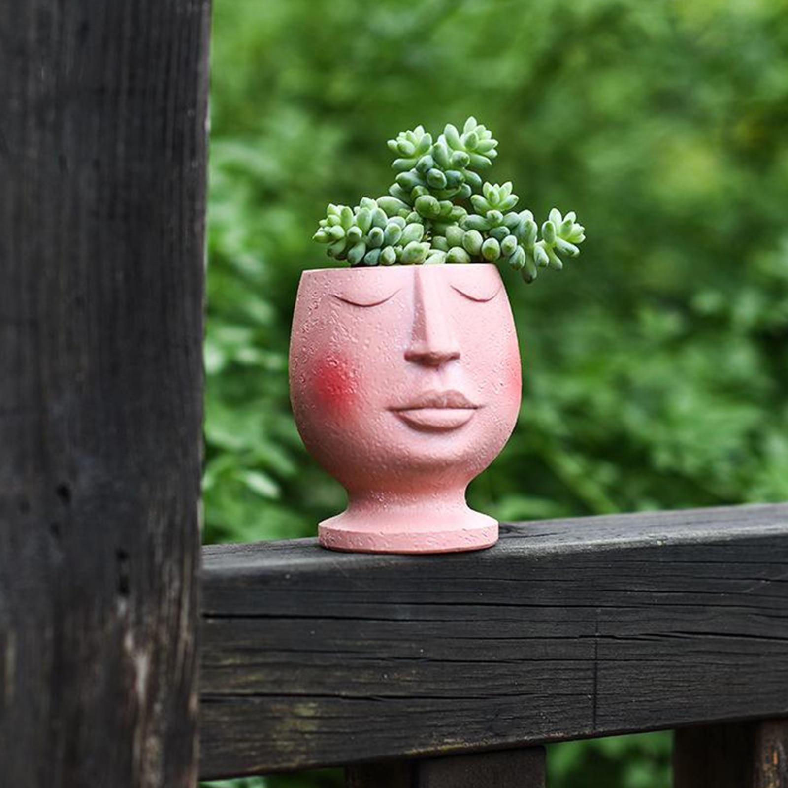 Смола лицо кашпо горшок для дома на улице цветок растение суккулент декор