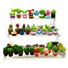 Flower Cactus Sets M...