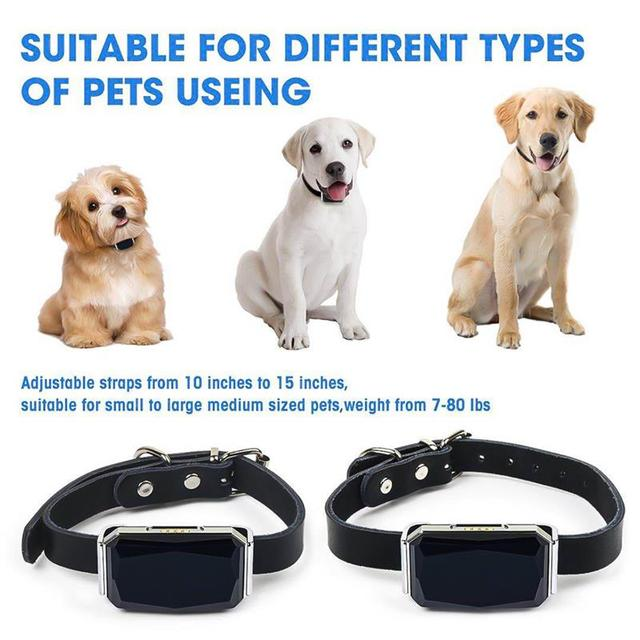 G12 GPS Smart Waterproof Universal Collar For Cats & Dogs  4