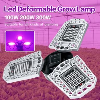 Led Full Spectrum E27 LED Grow Lights 220V 100W 200W 300W Tent Plant Growth Lamp Greenhouse Hydroponic 110V