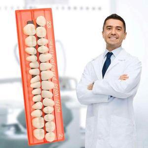 28pcs Full-mouth Denture Teeth