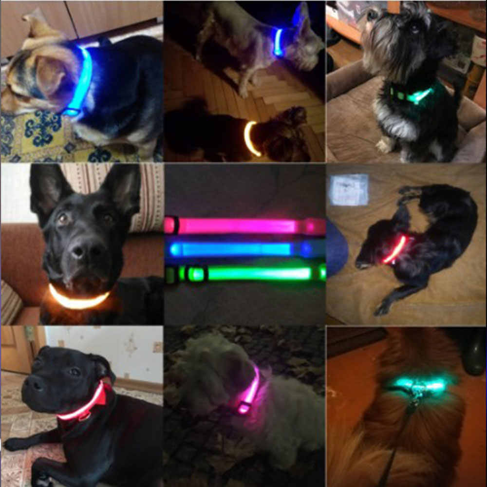 Tama/ño S-L se Puede Cortar Individualmente a 18-65 cm Mascotas en Naranja de la Marca PRECORN LED USB Silic/ón Collar Luminoso para Perros Recargable v/ía USB gatas
