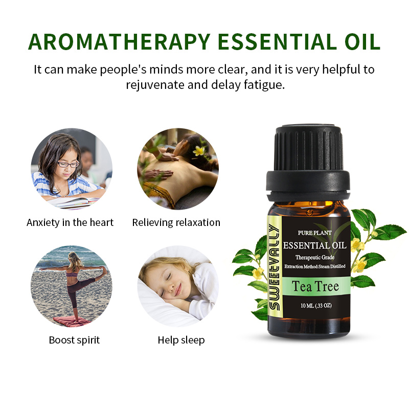 10ml Essential Oil Natural Plant Aromatherapy Relaxing Fragrance Tea Tree Essential Oils for Home Air Humidifier Freshener 5