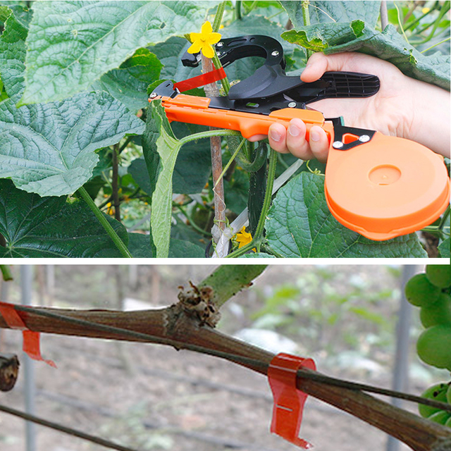 10000 stücke Tapetool Staple Pin Nail Band Werkzeug Tapener Binden Obst Baum Elektroschere Maschine Pack Anlage Garten Stamm Verbinden Werkzeug a20