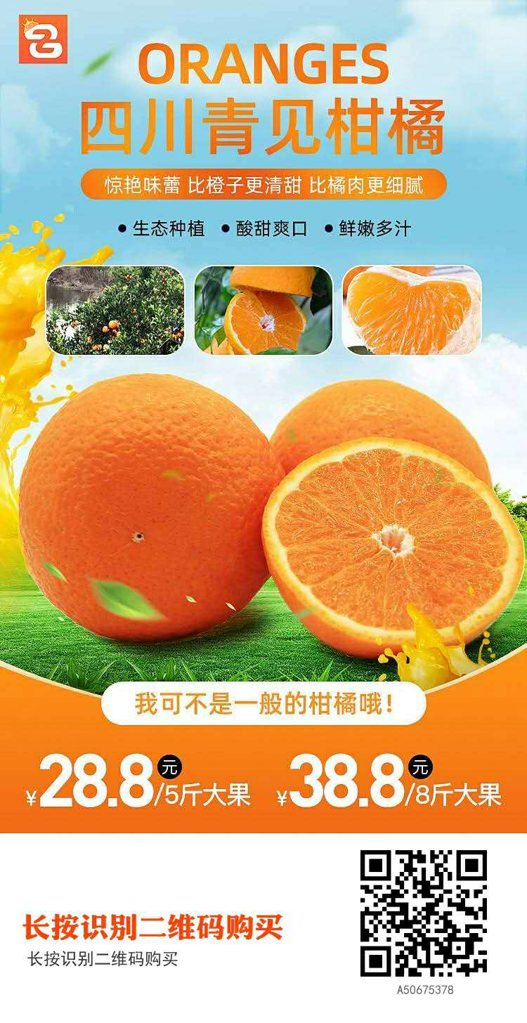 【全国】当季新品四川青见柑橘特惠价5斤28.8元起基地直发