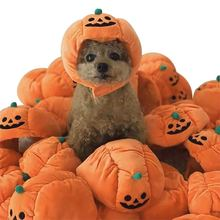 Рождество Хэллоуин для домашней собаки кошка тыква шляпа нарядный