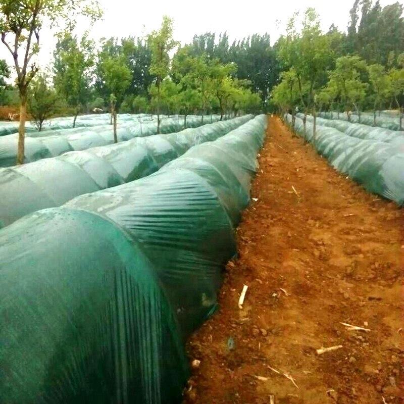 1 メートル幅: 1 メートル 1.2 メートル 2 メートルグリーンフィルム野菜生姜植栽腐葉土フィルム農業温室フィルム若い植物保護シート