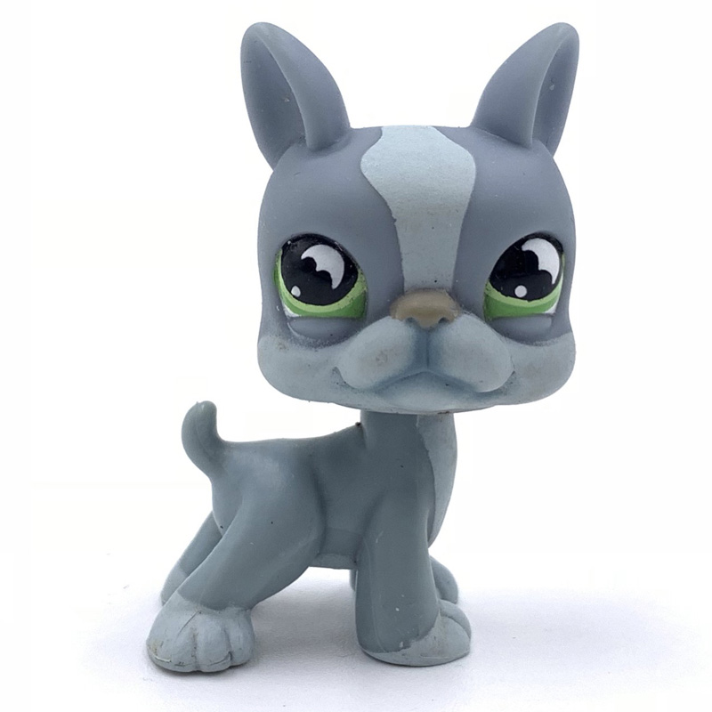 Old Animal Pet Shop Toys BOSTON TERRIER #1025 Cute Dog Original Anime Figure Lovely Present For Boys And Gifts