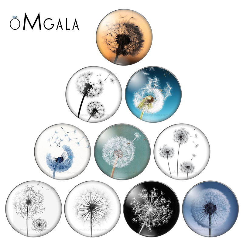 Reidgaller Mix Dandelion Photo Round Glass Cabochon 8mm 12mm 20mm 25mm 30mm Diy Flatback Jewelry Findings For Earrings Pendants