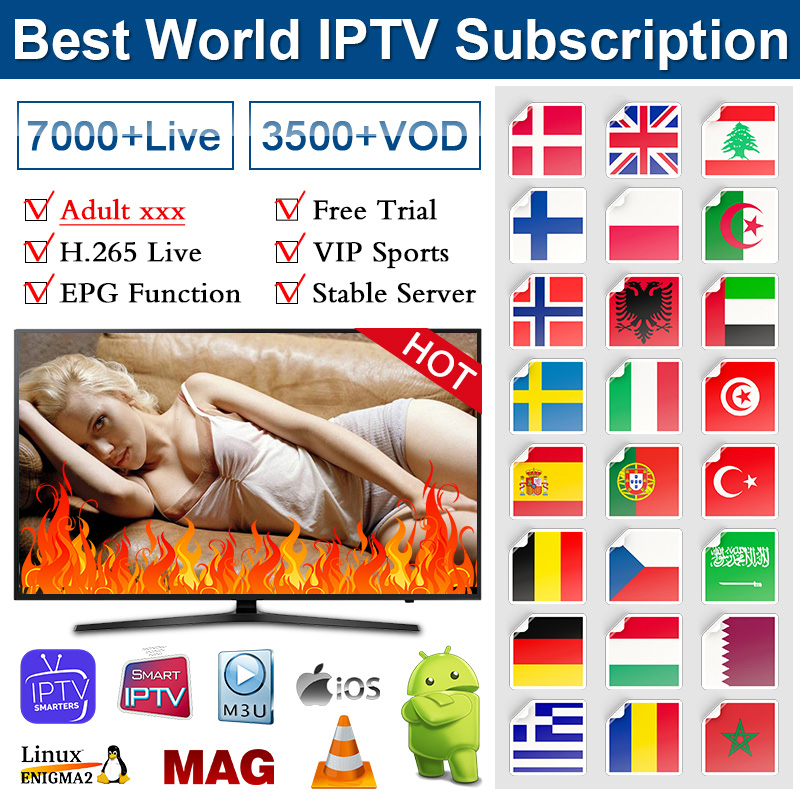 IPTV Subscription Spain Germany Turkey Arabic IPTV Spain M3u With Adult IPTV XXX Code IP TV Portugal Morocco Africa Algeria 4K