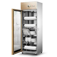 Cabinet Type Commercial Single Door Disinfection Cabinet Large Capacity Cleaning Melamine Ozone Infrared Disinfection Cupboard
