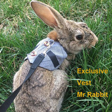 New Design Rabbit Leash Lead Vest Small Animals Mesh Cotton Collars Plain Grey Harnesses S M L Harness with Leash Pet Strap Set