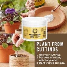 Regulators Rooting-Powder Bonsai-Tool Medicinal-Hormone Transplanting Rapid-Growth Garden