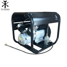 TUXING 4500Psi Pcp Air Compressor Auto Stop High Pressure Double Cylinder Pump for Pneumatic Rifle Gas Tank Filling 220V 110V