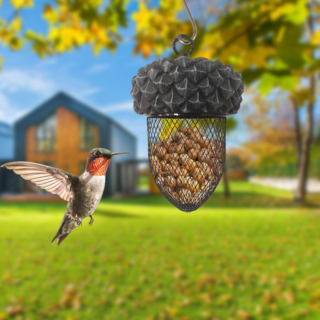 PAPASGIX NEW Creative Birds Feeder Hanging Birds Food Feeding Device Parrot Toy For House Garden Outdoor Cages 5
