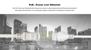 Image 4 - Orginal Hikvision 2MP Dome POE IP Camera Home/Outdoor Security ONVIF With DWDR IP 67 IR 30m Vdieo Surveillance DS 2CD1121 I