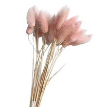 30 шт./лот, градиентный букет из натуральных сушеных цветов с изображением лагуруса оватуса, свадебные украшения для дома, Кролик хвост, трава, настоящие цветы