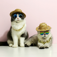 fashion-lovely-pet-cat-glasses-dog-glasses-puppy-products-for-little-dog-cat-eye-wear-protection-sunglasses-photos-accessories