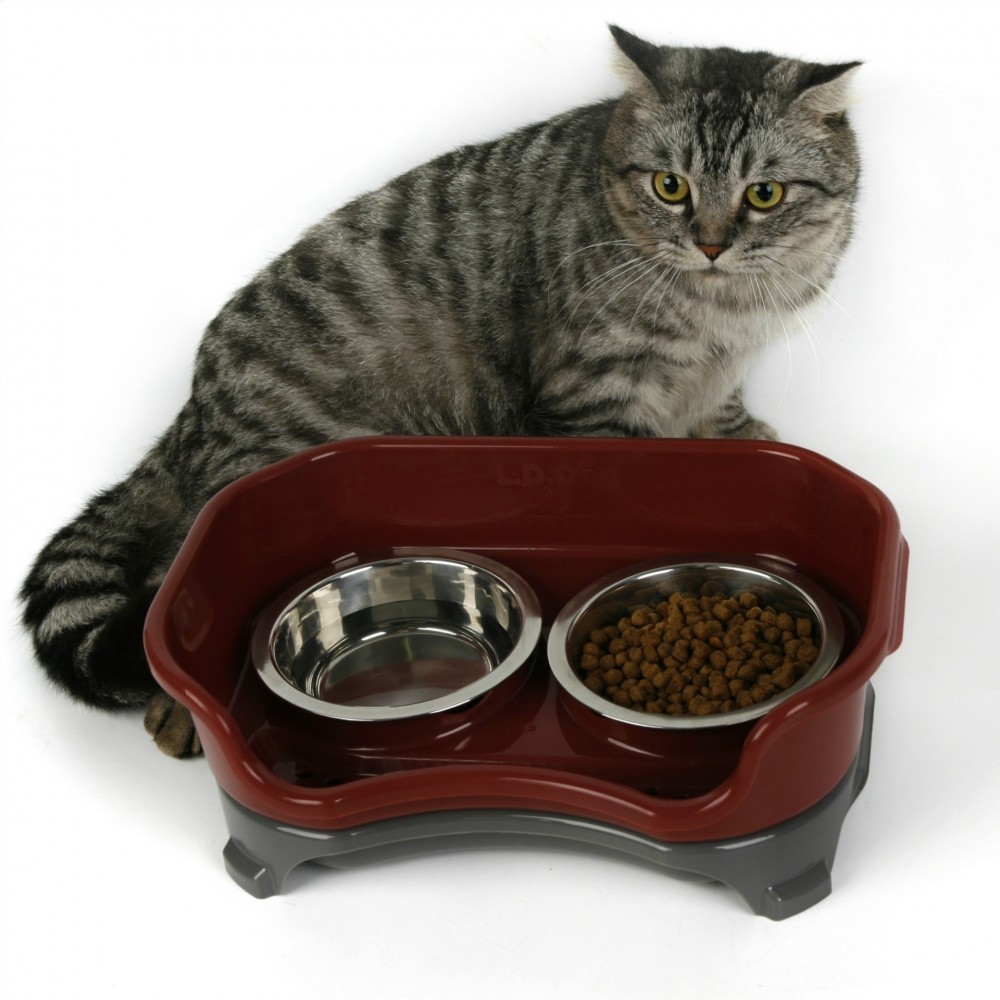 Pet Supplies Anti-Dog Food Fall Table Cat Double Bowl Teddy Food Basin Dog Stainless Steel Rice Bowl Pet Bowl 5
