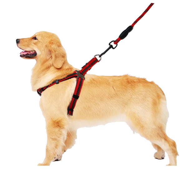 Medium Large Reflective Gallus Chest And Back Neck Ring Walking New Style Dog With Hand Holding Rope