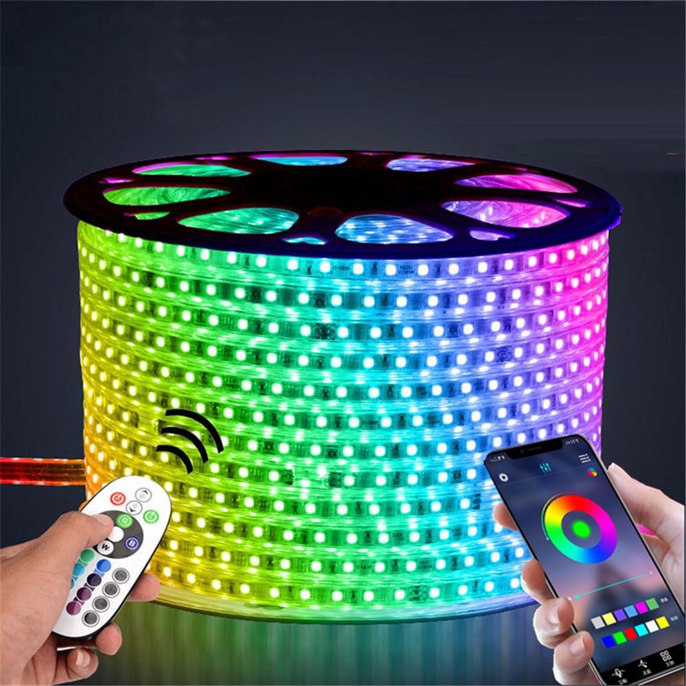220 v led 스트립 빛 12 v rgb smd 5050 테이프 전화 app 및 원격 제어 방수 유연한 조명 야외 룸 장식 램프