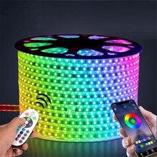 220V LED 스트립 빛 12V RGB SMD 5050 테이프 전화 APP 및 원격 제어 방수 유연한 조명 야외 룸 장식 램프